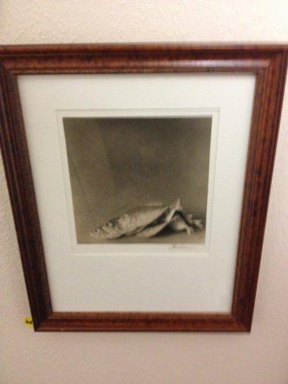 ART - FISH - TONED SILVER GELATIN PRINT - SIGNED A.K.