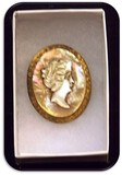 Late Victorian Mother of Pearl Cameo Brooch