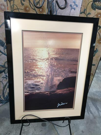 Framed wall art, signed by artist see pic, Approximately 32? x 24?