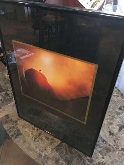 "Michael Fatali Desert Light Images, signed, framed (broken glass see pic) art approx. 24"" x 18"""