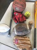 Sporting Goods, Baseball Gloves, Bats, Balls, Footballs, Basketball etc.