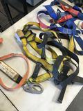 3 pieces. 2 harness 1) 3M shock web Lanyard