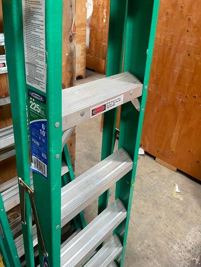 6' Werner load capacity 225lbs ladder