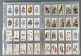 Group of vintage cigarette/tobacco trading cards
