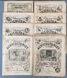 Group of 8 antique American Agriculturist publications