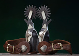Pair of single mounted Spurs by Golden, Colorado Bit and Spur Maker Gene Ro