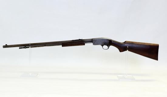 Premier Mod Trail Blazer 22 S-L-LR cal pump Rifle