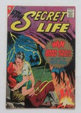 MY SECRET LIFE: