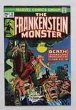 THE FRANKENSTEIN MONSTER: