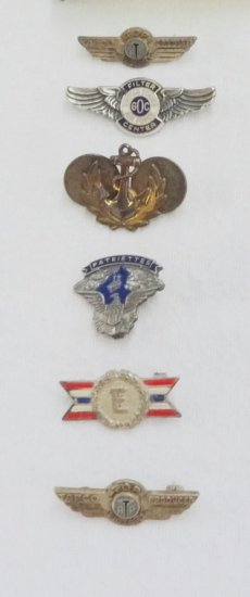6 Pieces WWII and Later Misc. Pins, Badges, Etc.