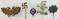 5pcs-WW2 German Stickpins/RLB, Swastika, Etc.-Stenographer Pin
