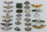 25pcs-Misc. Military Wings/Badges/Airborne Etc.