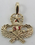 10kt Gold Special Forces Necklace Pendant