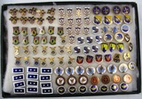 110+ Pieces U.S. Military Related Insignia/Pins