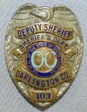 Scarce & Obsolete Vintage South Carolina, Darlington County Deputy Sheriff Badge-Numbered