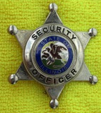 1960-70's State of Illinois Security Officer 6 Point Star Badge