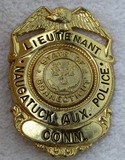 1960-70's State Of Connecticut,  Naugatuck Aux. Police Lieutenant's Badge