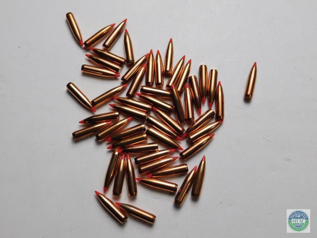 Lot: 50 Nosler Ballistic Tip - 7mm 150 grain | Proxibid Auctions