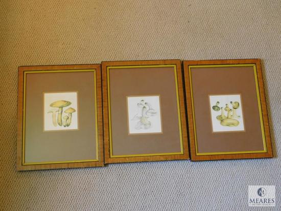 Lot of 3: Ant Mushrooms Village Interiors Vintage Framed Prints