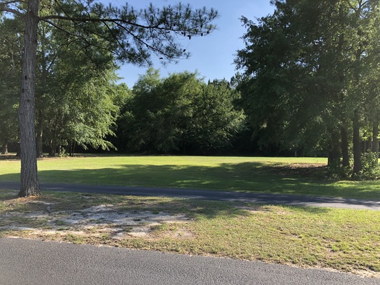 Wyboo Plantation - 137 Woodlake Drive, Manning, SC 29102