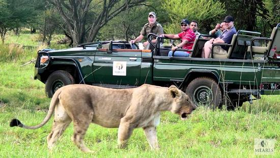 Mabula Private Game Reserve, Limpopo Province, South Africa