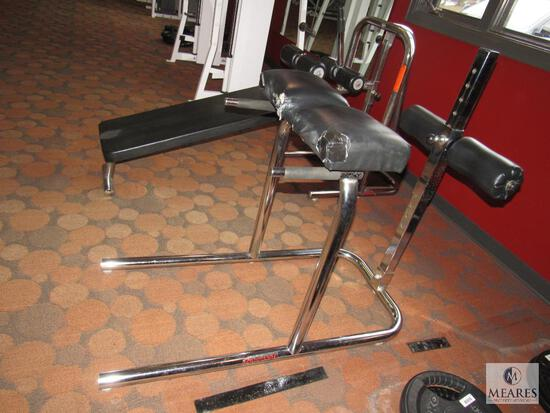 Universal Weight Bench GHD Glutes