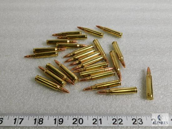 25 rounds new Federal .223 ammunition 55 grain FMJ