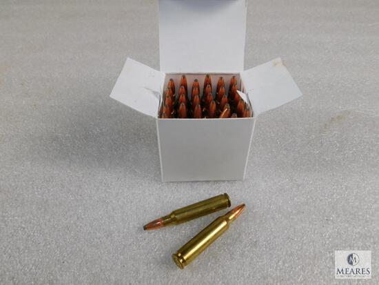 30 Rounds .223 Cal 55 Grain Soft Point Ammo
