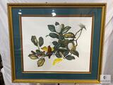 Framed and Matted Artist Signed Print Under Glass
