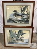 Pair of Framed and Matted Artist Signed Duck Prints Under Glass