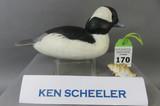 Ken Scheeler Bufflehead