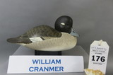 William Cranmer Bufflehead