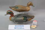 Pr. Madison Mitchell Greenwing Teal