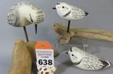 Van Dyke Shorebirds