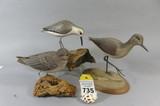 McChesney, Barkley, Rhodes, Shorebirds