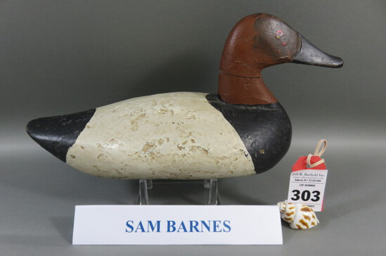 Canvasback by Sam Barnes