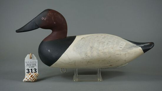 Canvasback by Charlie Bryan