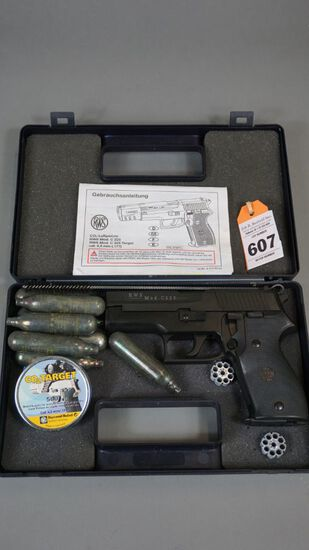 RWS co2 Pistol