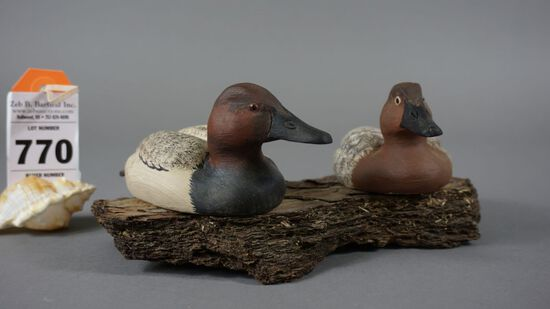 CANVASBACKS BY DONNIE MATTHEWS
