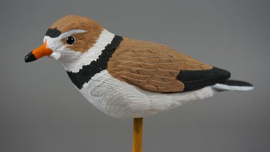 PLOVER BY MIKE ADCOCK