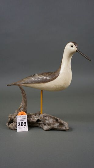 Yellowlegs by Roe Terry