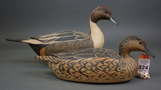 Pintails by Grayson Chesser