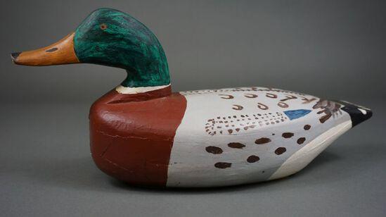 Mallard by Kirby Thompson