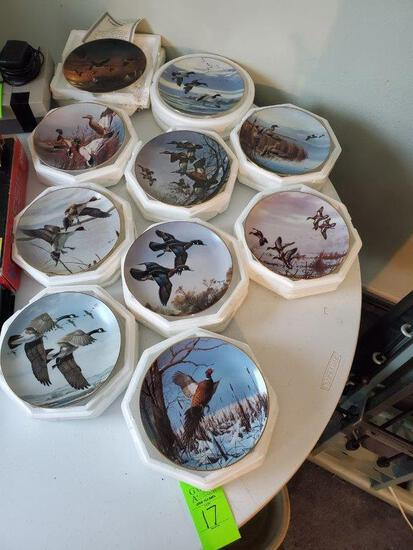 David Maass Duck Collector Plates (9) and One Collector Plate By Terry Redlin