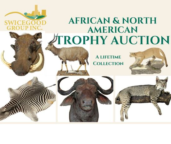 Sharkey Trophy Mount Auction