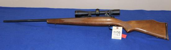.243 Rifle w/new hasting