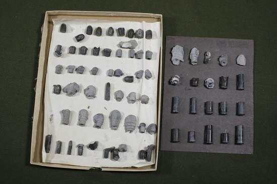 Antique group of cartridges and spent bullets.
