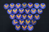 (25) WWII AAF patches (Army Air Corps)
