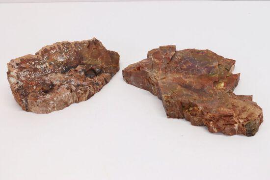 (2) Nice AZ Petrified Wood Specimens