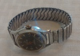 Vintage Waldman Shock Protected Antimagnetic Swiss Made Mens Wrist Watch